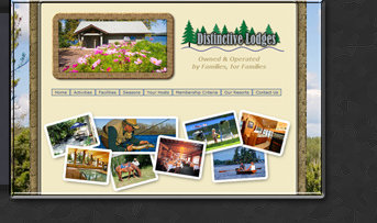 Web Design by Tiffany Richards for Distinctive Lodges, MN